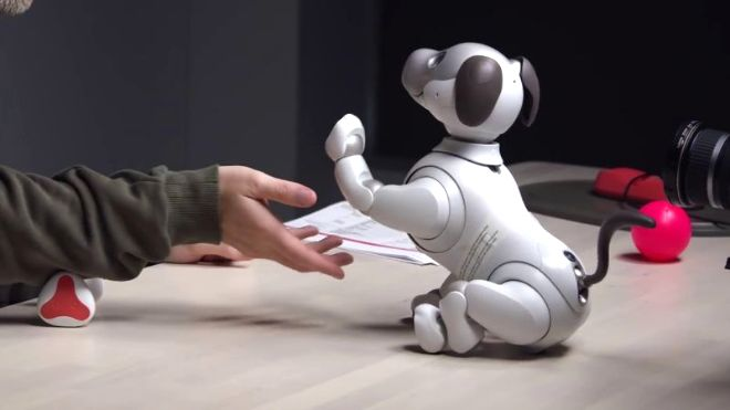 Videogram: The $3000 Sony Aibo Robot Dog